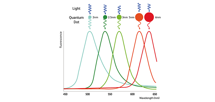 Why Are Quantum Dot Displays So Good?
