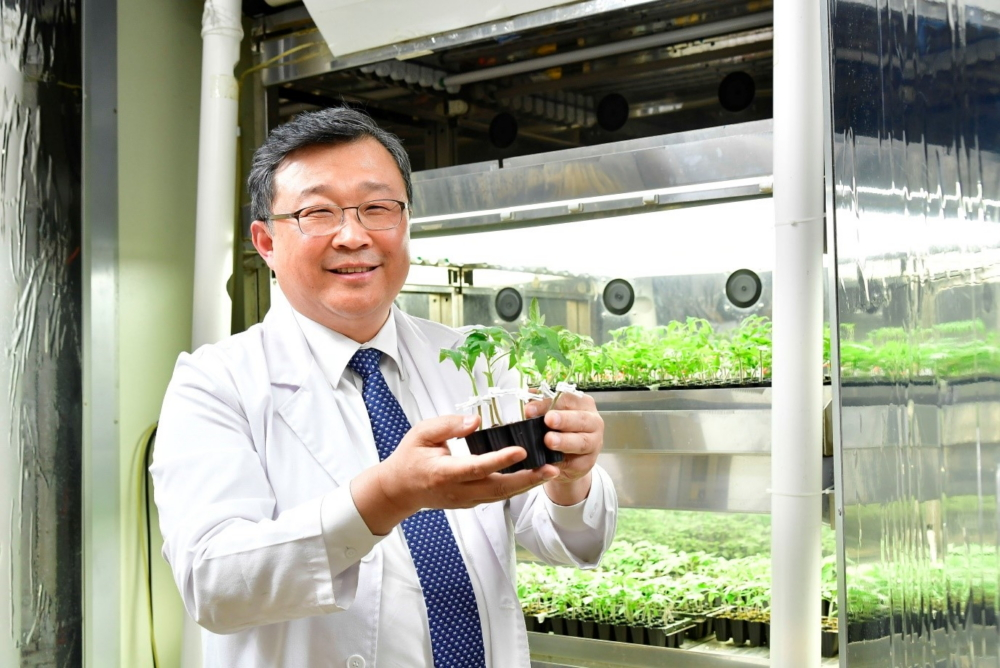 [Going Green 3] [Interview] Lighting the Way: Professor Changhoo Chun Discusses Samsung's Horticulture LEDs for Vertical Farming – Samsung Global Newsroom