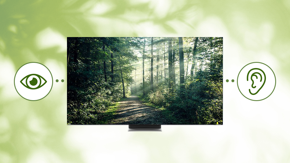 [Expanding Accessibility with Samsung] ① Vision - Image 6