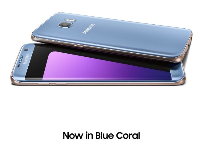 Life is more Bold with Blue Coral