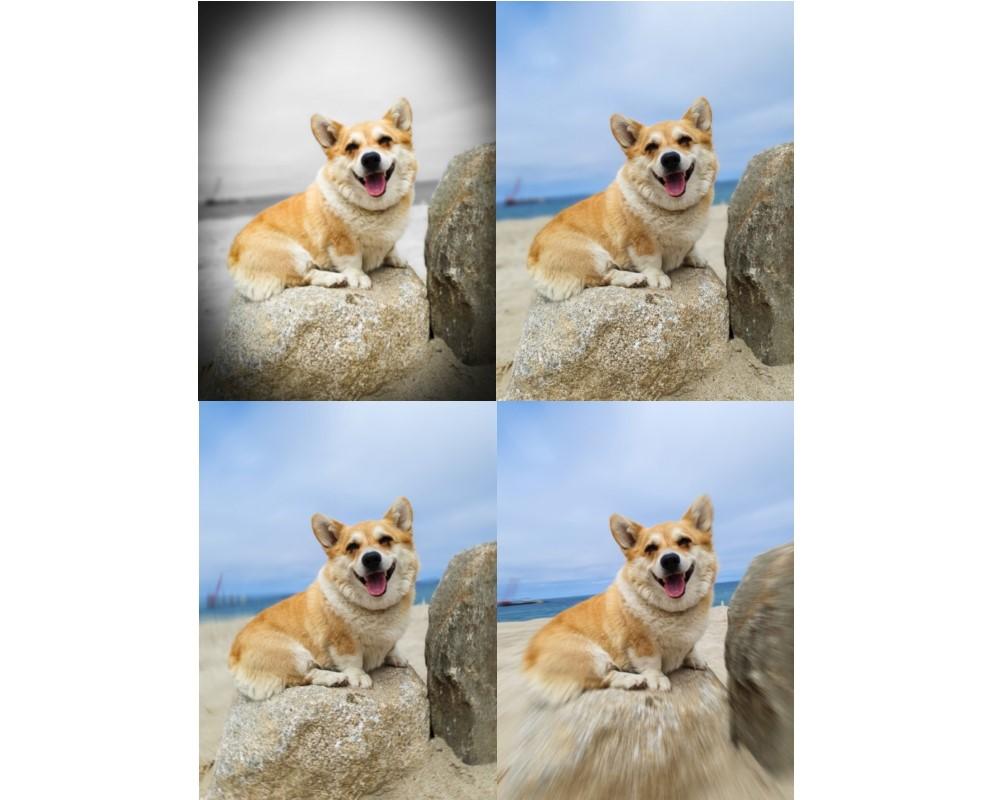Как сделать правильное фото