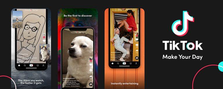 Стимпанк, золотые цветы и собаки шиба-ину – самые популярные темы для смартфонов в 2019 году