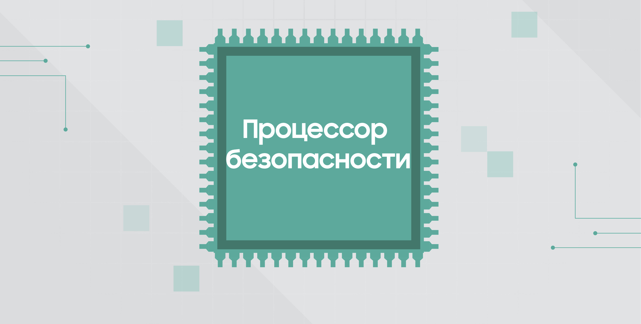 Процессор безопасности Samsung Galaxy S20