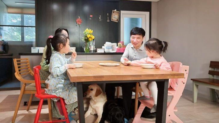 Как устроена школа собак-поводырей Samsung